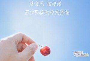 广州原画大师机构靠谱吗